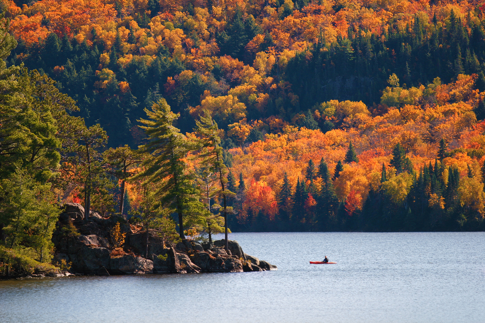 Algonquin Provincial Park - Summer Canadian Travel Destinations
